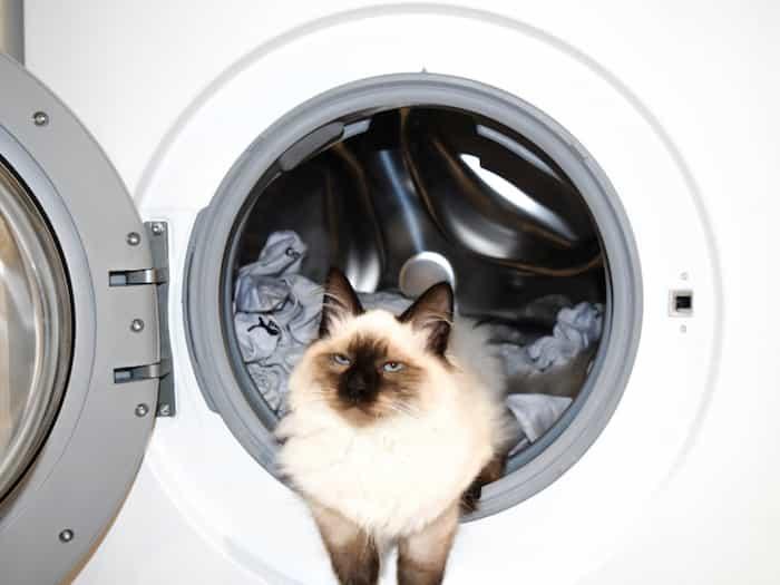 Reparar la bomba de agua de la lavadora